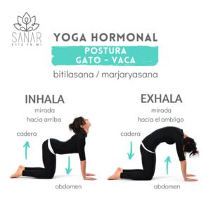 Guía Gratis sobre Posturas de Yoga sencillas en la Menopausia 1
